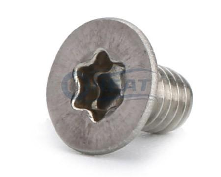 Csk torx socket stainless steel screw manufacturer