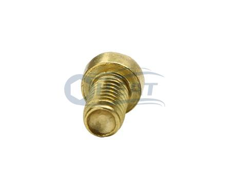 Hex socket cap brass screw