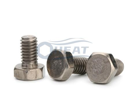 Hex titanium bolt manufacturer